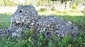 Tabby ruins of 1809 sugar mill, Sapelo Island, GA, US.jpg