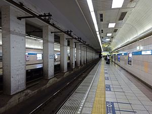 Takadanobaba Station - The Tozai Line subway platforms in June 2016