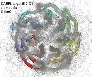 Sequence analysis - Image: Target 3dsm Rib 354predicted Models CASP8