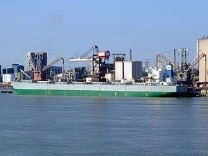 Te Ho p3, Port of Rotterdam, Holland 08-Jul-2007.jpg