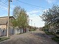 Temiryazeva Str., Melitopol, Zaporizhia Oblast, Ukraine 03.JPG
