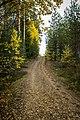 Tenholan linnavuori, Hattula, Finland (48934341593).jpg