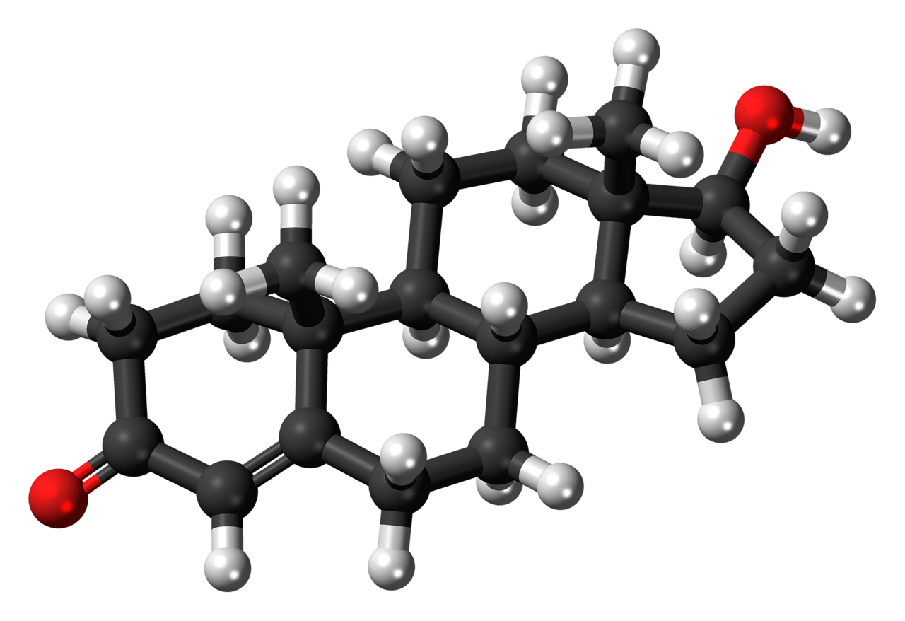 A ball-and-stick model of testosterone.