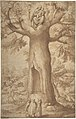The Beech Tree of the Madonna at La Verna MET DP801409.jpg