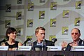 The Blacklist - Panel (9316987645).jpg