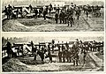 The Civil War through the camera - hundreds of vivid photographs actually taken in Civil War times, together with Elson's new history (1912) (14739991696).jpg
