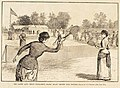 The Ladies' Lawn Tennis Tournament, Staten Island Cricket Club Grounds.jpg