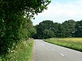 The Road from Cliffe to Skipwith - geograph.org.uk - 196327.jpg