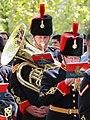 The Royal Artillery Band (17169563527).jpg
