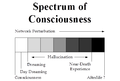 The Spectrum of Noise-Driven Consciousness via Thaler.png