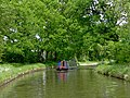 The Staffordshire and Worcestershire Canal south of Calf Heath - geograph.org.uk - 1343541.jpg