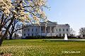 The White House - Washington DC (7645117758).jpg