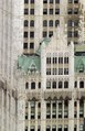 The Woolworth Building in New York City LCCN2013650464.tif