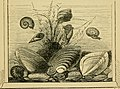 The book of the aquarium and water cabinet; or Practical instructions on the formation, stocking, and management, in all seasons, of collections of fresh water and marine life (1856) (20207953250).jpg