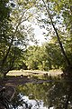 Three Creeks - Blacklick Creek Bed Confluence 1.jpg