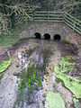 Thruxton - Pillhill Brook - geograph.org.uk - 1128033.jpg
