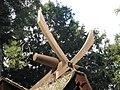 TigikatuogiP9140308.jpg