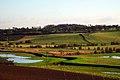 Tillingham Valley - geograph.org.uk - 1168471.jpg