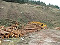 Timber operations in Glen Shiel - geograph.org.uk - 1757625.jpg