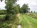 Track, to Harrowdown Hill - geograph.org.uk - 1439325.jpg