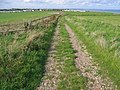 Track from Atwick - geograph.org.uk - 256930.jpg