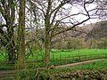 Trail - panoramio - beglib.jpg