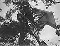 Training slide depicting a Sopwith 1 1-2 Strutter crashed into a tree (17243564649).jpg