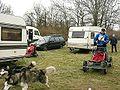 Trainingswagen für Schlittenhunde.jpg
