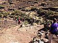 Trekking down the path - panoramio.jpg