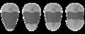 Trilobite Pygidia types.png