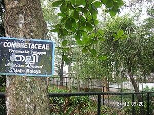 Thiruvananthapuram Zoo - Image: Trivandrum Zoo 33