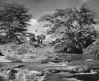 Tsavo River - Tsavo River, early 1950s
