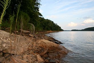 Tugaloo River - Bank of the Tugaloo River at Lake Hartwell near the Tugaloo State Park campground