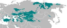 Turkic language map-present range.png