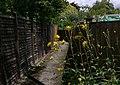Twitten in Easebourne - geograph.org.uk - 1398203.jpg