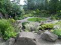 UT Botanical Garden 3.JPG