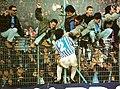 Ultras SPAL 1992.jpg