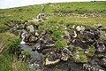 Upper Teign River - geograph.org.uk - 1378656.jpg