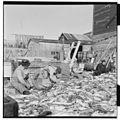 Vårfiske på Vardø - L0049 770Fo30141609280110.jpg