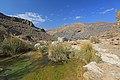 Výlet v Namib-Naukluft NP - panoramio.jpg