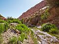 Valle de Jere-CTJ-IMG 5714.jpg