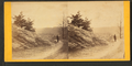 View from Lover's Leap, Neversink Mt, from Robert N. Dennis collection of stereoscopic views.png