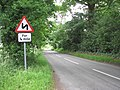 View north-east along Surlingham Lane - geograph.org.uk - 1363117.jpg