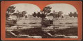 View with a rustic bridge, by C. H. Scofield.png