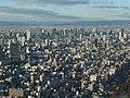 Views from Abeno Harukas in 201512 004.JPG
