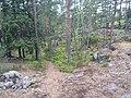 Viherlaakso, 02710 Espoo, Finland - panoramio (4).jpg