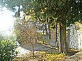 Villa La Petraia-cancello.jpg