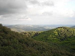 Vistas desde el Cerro Negrillo.JPG