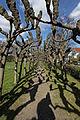 Wacholderpark Fuhlsbüttel 08.jpg