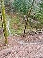 Wanderweg im Schwäbischen Wald - panoramio.jpg